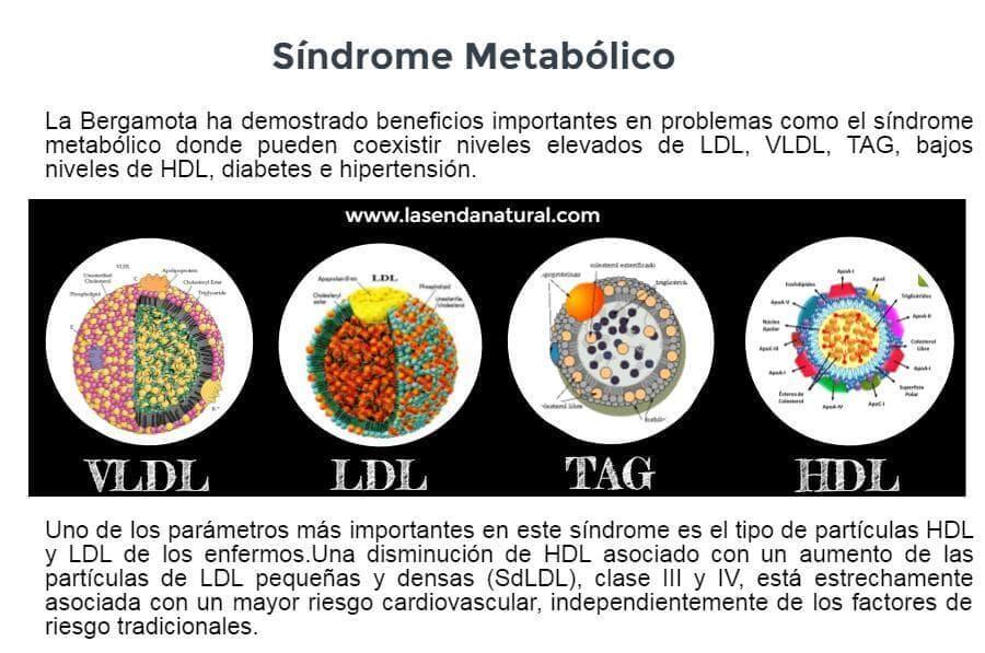 bergamota y sindrome metabolico
