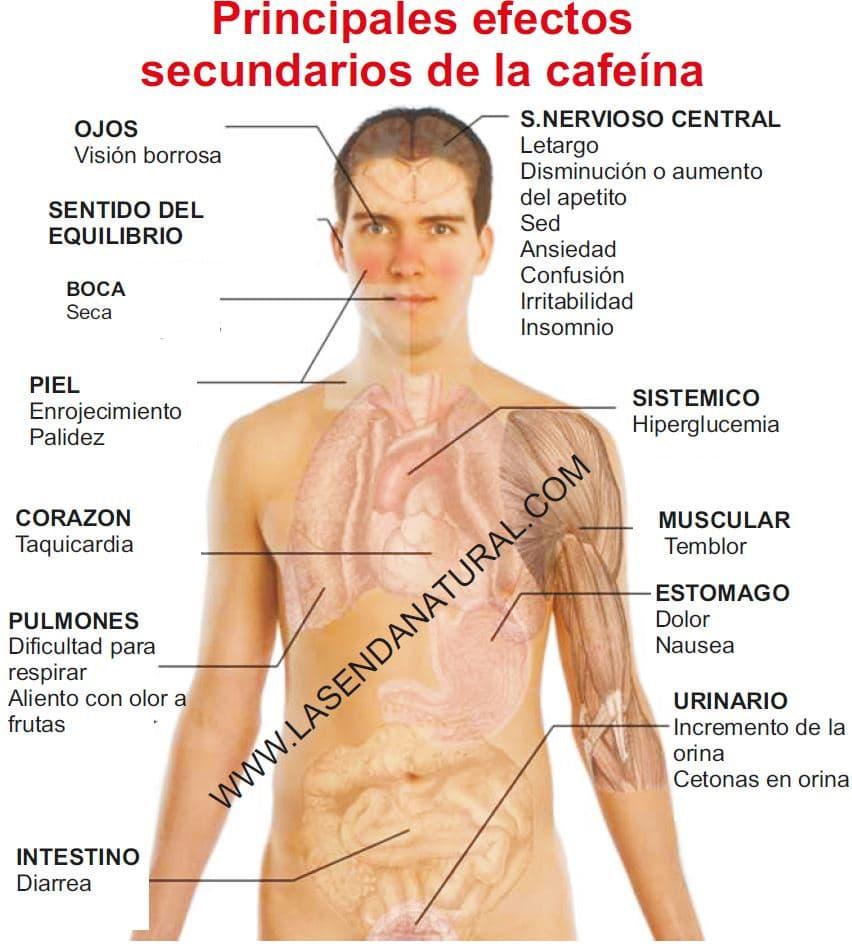 Síntomas de la cafeina