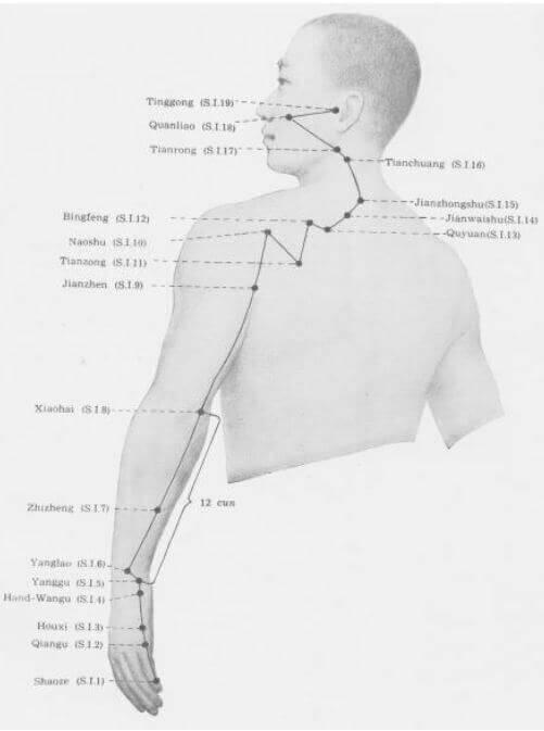 meridiano intestino delgado