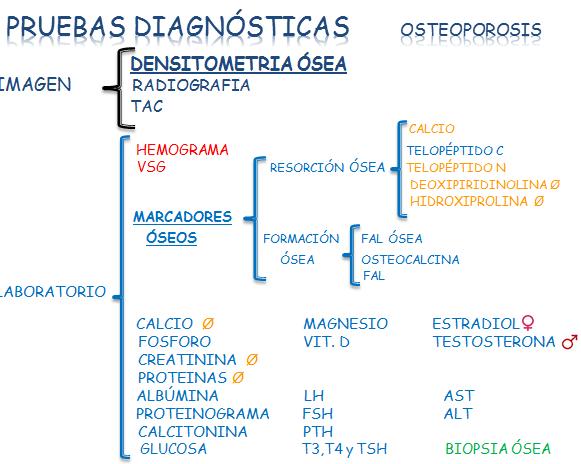 pruebas-osteoporosis