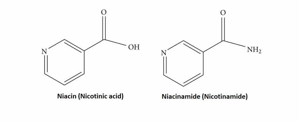 vitamina-B3